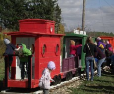 Kids Playtime at Glenwood Apple Orchard
