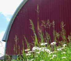 Glenwood Orchard Big Red Barn