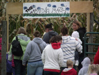 Get Lost in the Glenwood Orchard Corn Maze
