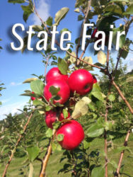 State Fair Apples Available at Glenwood Orchard